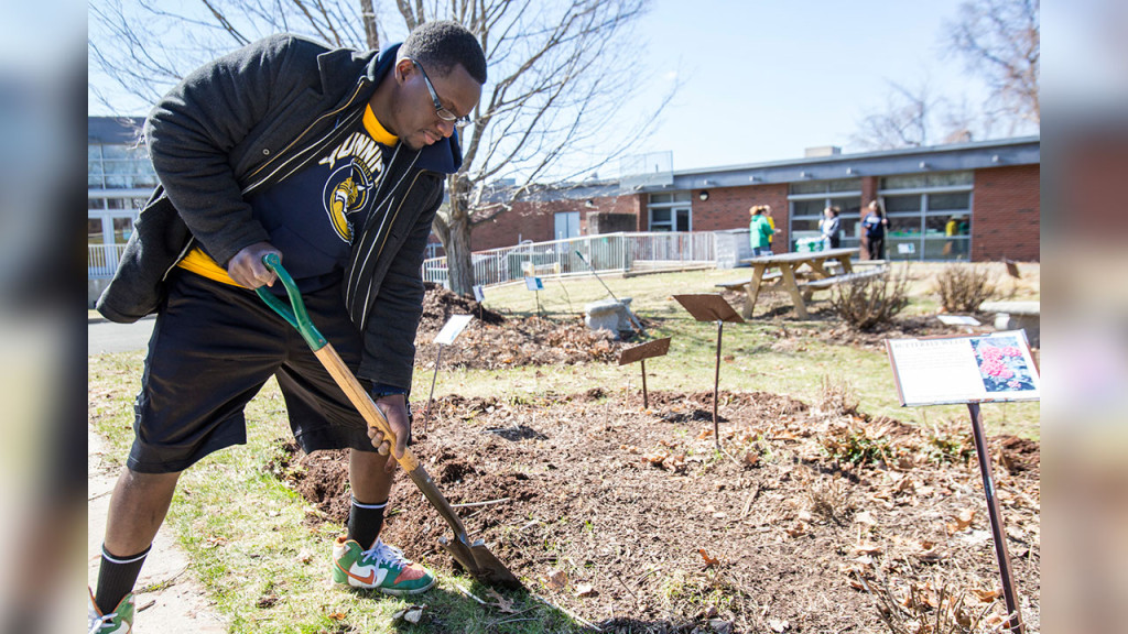 Quinnipiac University student John Midy edged flower beds at Bear Path School in Hamden during the 2015 Big Event.
